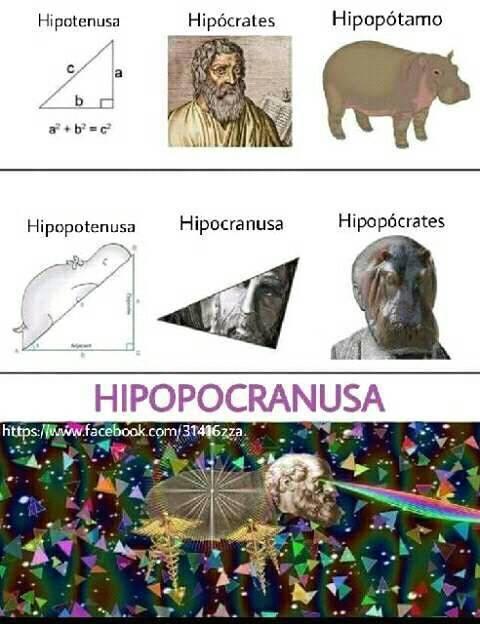 hihohocanusa