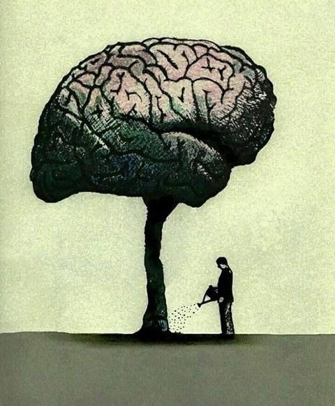 cerebro2.jpg